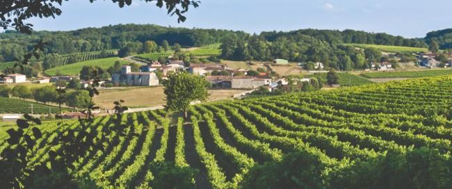 Puy-Leonard Famous Cognac Vineyards