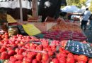 Puy-Leonard La Vienne Markets