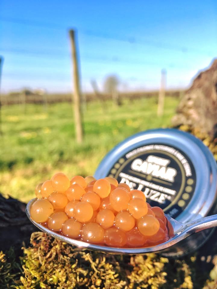 Puy-Leonard Caviar de Luze
