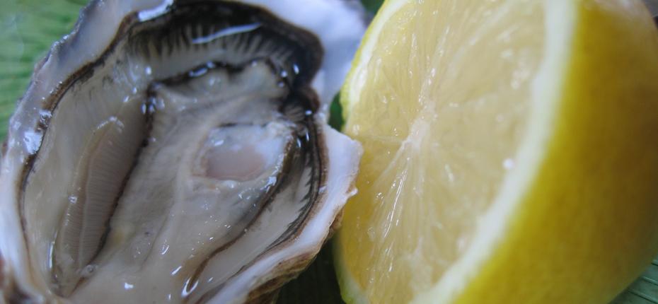 Puy-Leonard Huîtres Produits de la Mer