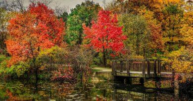 Puy-Leonard Autumn