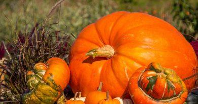 Puy-Leonard Savour Autumn