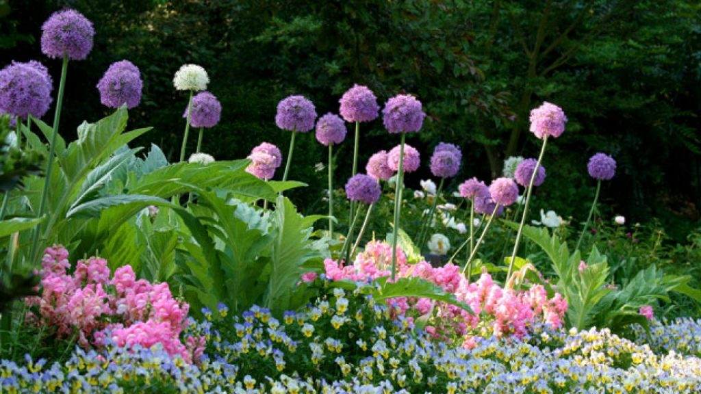 Puy-Leonard Garden May