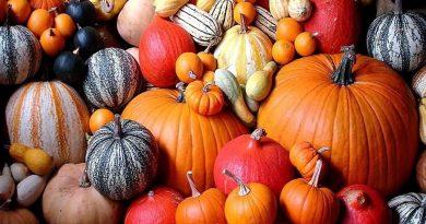 Puy-Leonard Pumpkins October
